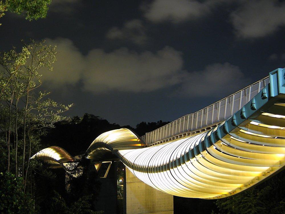 Сингапурдагы Толкун көпүрө. Ал өзүнүн формасынан улам ушундай аталып калган