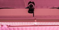 Веб-камера. Архивдик сүрөт
