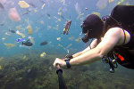 Дайвер снял на видео катастрофическое загрязнение океана у острова Бали