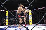 Удары, броски и удушающие приемы — лучшие моменты турнира MMA в Бишкеке
