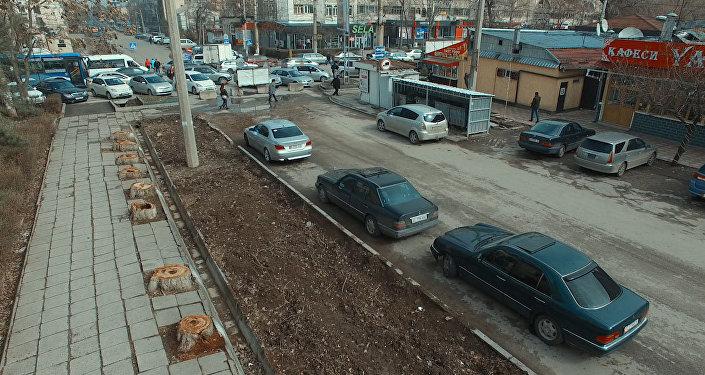 Как зеленая улица Бишкека превратилась в пустырь — видео с дрона
