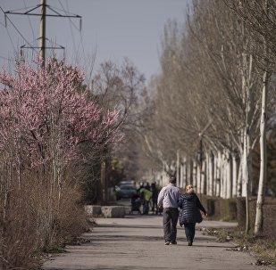 Мужчина и женщина гуляют на одной из улиц Бишкека. Архивное фото