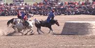 Играли так, что лошади падали, — видео с финала турнира по кок-бору