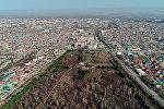 Ботанический сад имени Гареева в Бишкеке. Архивное фото