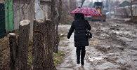 Женщина с зонтом идет по улице в новостойке. Архивное фото
