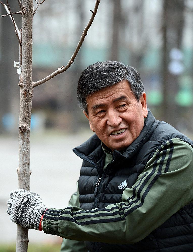 Субботник в Дубовом парке им.Ч.Айтматова в Бишкеке