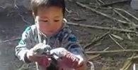Мальчик из Кыргызстана, разнимающий дерущихся индюков, — видео покоряет Сеть