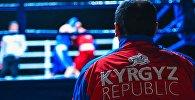 Встретимся на ринге! Спортсмены, прославляющие Кыргызстан своими кулаками