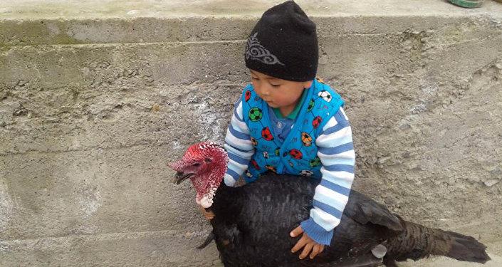 4-летний житель села Кара-Таш Ноокатского района Абдулбарри Илязов Ошской области
