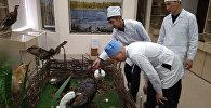 Студенты-аграрии из Кыргызстана поехали на обучение в ведущий сельскохозяйственный вуз России