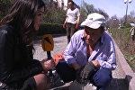Как стать известным? Бишкекчане дали эффективные советы депутатам ЖК