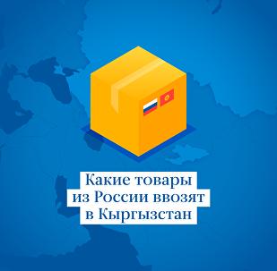 Какие товары из России ввозят в Кыргызстан