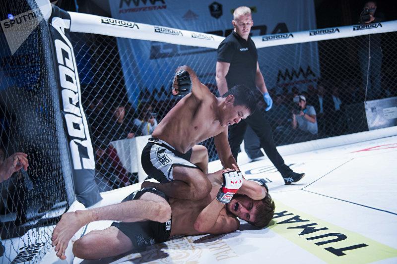 Боец уложил соперника и продолжает наносить мощные удары кулаками