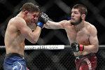 Российский боец смешанных единоборств Хабиб Нурмагомедов победил американца Эла Яквинту и завоевал титул чемпиона Абсолютного бойцовского чемпионата (UFC) в легком весе.