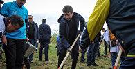 Сапар Исаков принял участие в субботнике, организованном бизнес-ассоциациями в рамках национальной кампании Таза Жашоо
