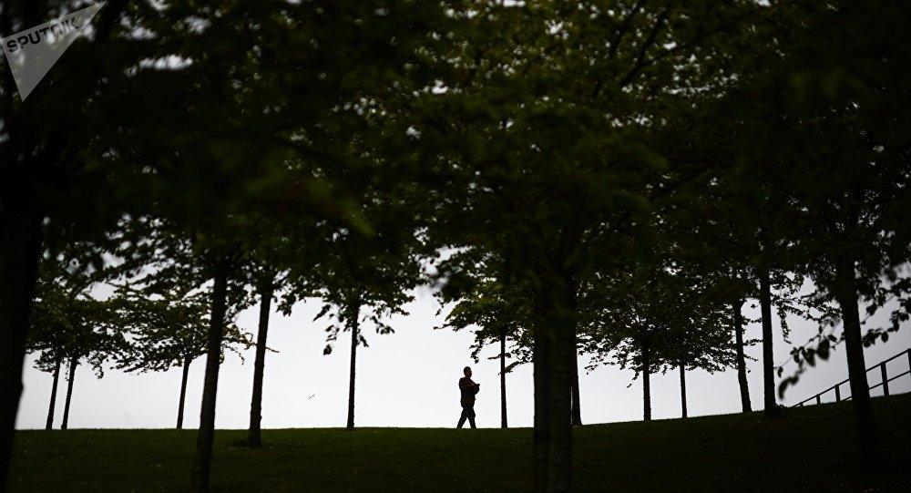 Паркта сейилдеп бараткан адам. Архив
