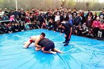 Аксы районуна караштуу Мукур айылында грэпплинг боюнча район биринчилиги өттү