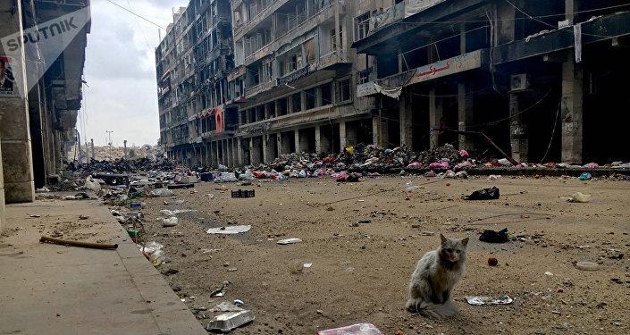 На одной из улиц в историческом центре (Старом городе) в Алеппо. Архивное фото