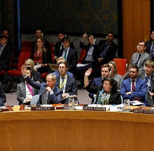 Голосование членов заседания Совета Безопасности ООН по инициативе Москвы после ударов США, Франции и Великобритании по Сирии в штаб-квартире ООН в Нью-Йорке, США, 14 апреля 2018