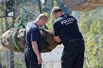Эвакуация жителей центральной части города Берлина из-за найденной бомбы времен ВОВ