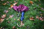Зонтики на траве во время дождя. Архивное фото
