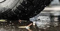 В связи с новыми правилами ПДД вырос спрос на автомобильный знак Шипы