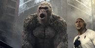 Снимок, выпущенный Warner Bros. показывает актера Дуэйна Джонсона в сцене из фильма Рэмпейдж.