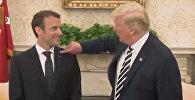 Трамп смахнул перхоть с пиджака Макрона