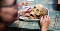 Антрополог с человеческим черепом. Архивное фото