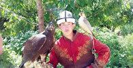 Пропажа беркута в Бишкеке