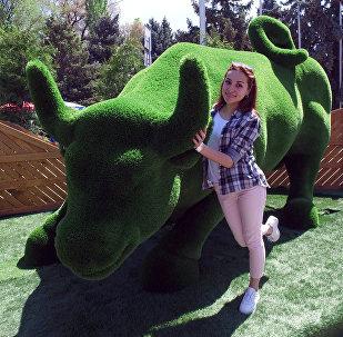 Скульптуры-топиарии поставили на старой площади Бишкека