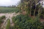 Оштун Кара-Суу районунда Коңурат каналынан суу ашып, болжол менен 10 турак үйдүн короо-жайын каптады