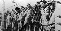 Узники концентрационного лагеря. Архивное фото