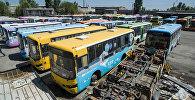 Автобустардын мүрзөсүнө айланган жайдын бүгүнкү абалы кандай? Видео