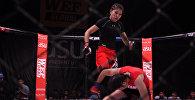 Кыргызстанка победила в первом женском бое в лиге WEF Global — видео