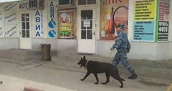 Милиционеры с собаками ищут бомбу на Орто-Сайском рынке. Видео