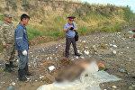 Последствия сходя селя в селе Ак-Жийде Ноокенского района