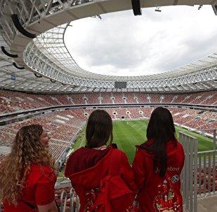 Волонтеры на Большой спортивной арене Лужники в Москве. Архивное фото