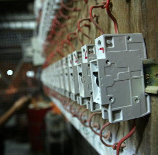 Электрические автоматы. Архивное фото