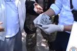 В Бишкеке со взяткой задержан завкафедрой — пожаловалась студентка. Видео