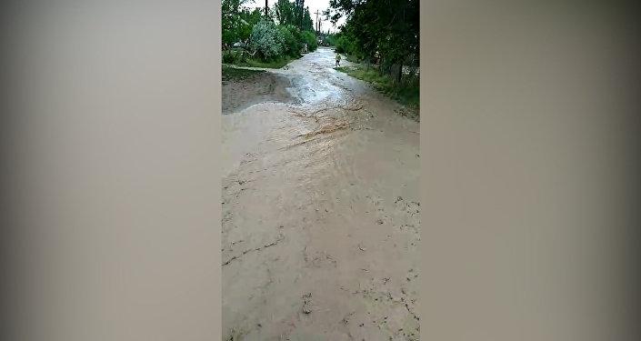 В Таласе сель затопил дворы домов и сельхозугодья. Видео