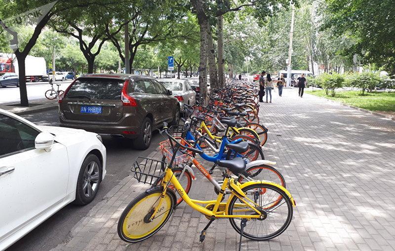 Велодорожка расположена между тротуаром и дорогой
