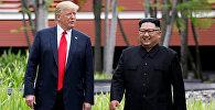 Президент США Дональд Трамп и лидер КНДР Ким Чен Ын во время встречи в Сингапуре. 12 июня 2018 года