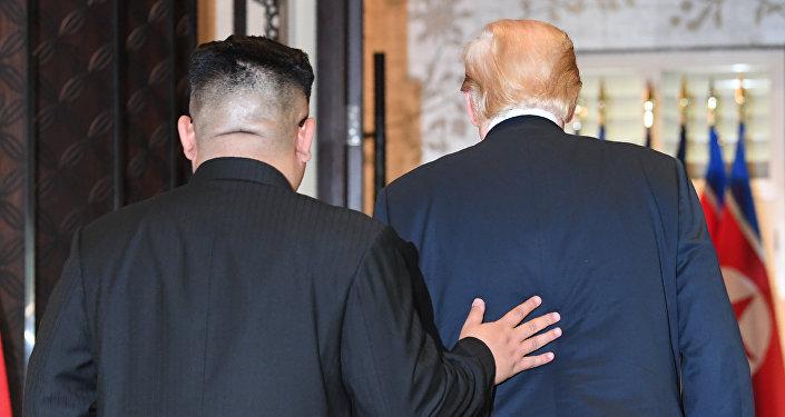 Встреча президента США Дональда Трампа и лидера КНДР Ким Чен Ына. Архивное фото