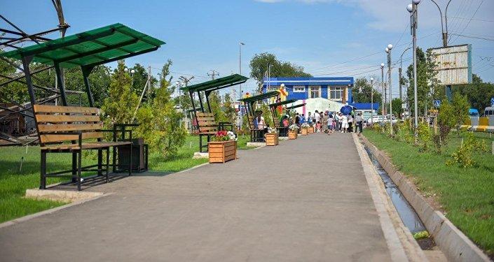 Сотрудники Бишкекзеленхоза посадили тут 13 крупномерных саженцев липы и 20 хвойных деревьев