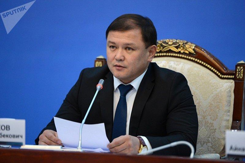 Спикер Жогорку Кенеша, депутат от фракции Кыргызстан Дастан Джумабеков на VI заседании Национального Совета по устойчивому развитию КР