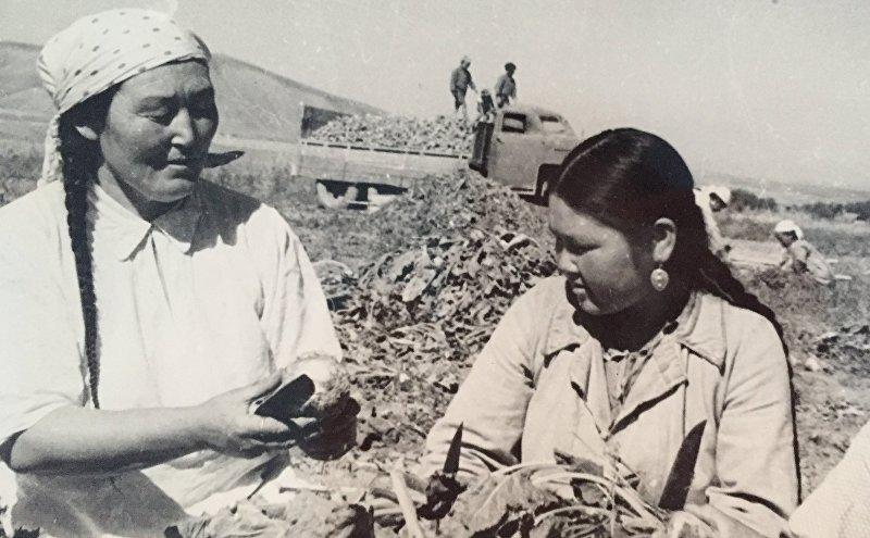 Архивные фотографии дважды героя социалистического труда Зууракан Кайназаровой