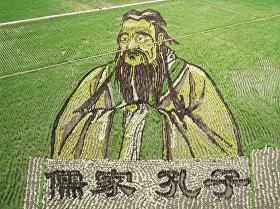 Портрет Конфуция на рисовом поле в Китае. 16 июня 2018 года