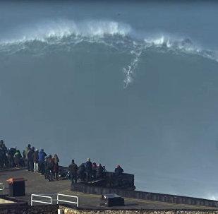 Отчаянный серфер покорил гигантскую волну в Португалии — захватывающее видео