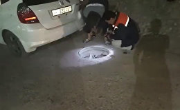 Бишкекчанин въехал в открытый люк в темноте. Чем это закончилось — видео